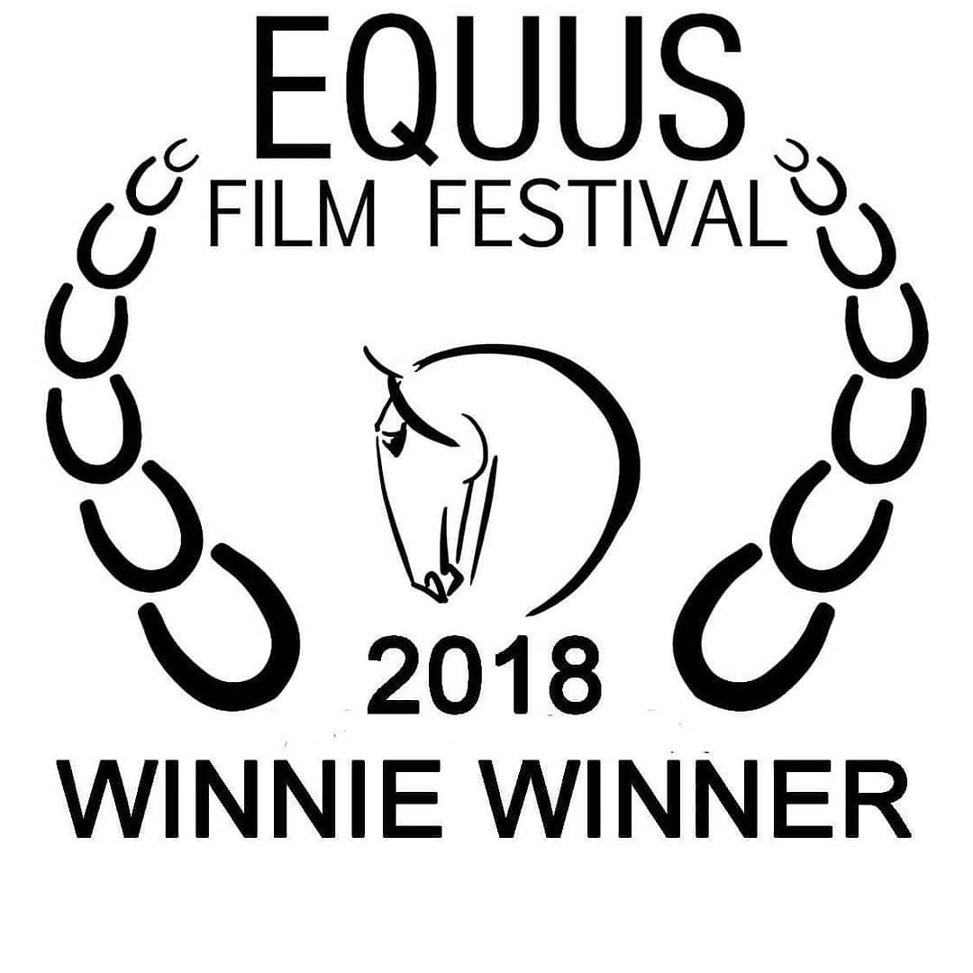 Film Festival Win & New Book Release